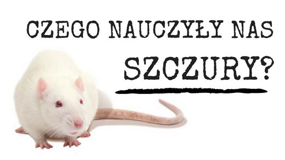 Czego Nauczyły Nas Szczury?